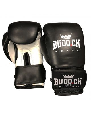 PRO SPARRING BOXHANDSCHUHE POWER