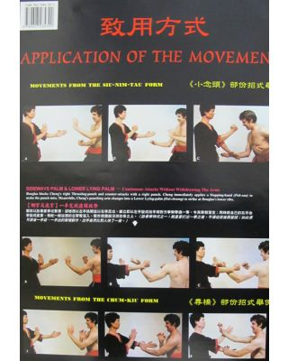 Wing Tsun Application For [57x87cm]