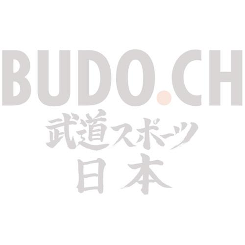 Gürtel BUDO.CH weiss mit Streifen blau
