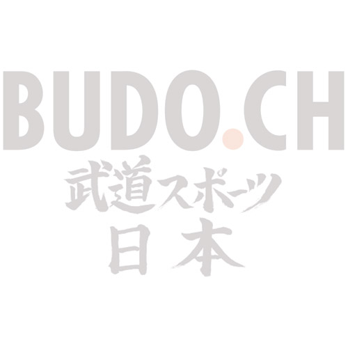 Kinder Gürtel BUDO.CH [grün mit blauem Streifen]