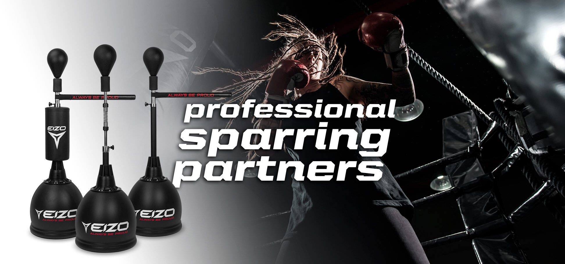 EIZO - professional sparring partners