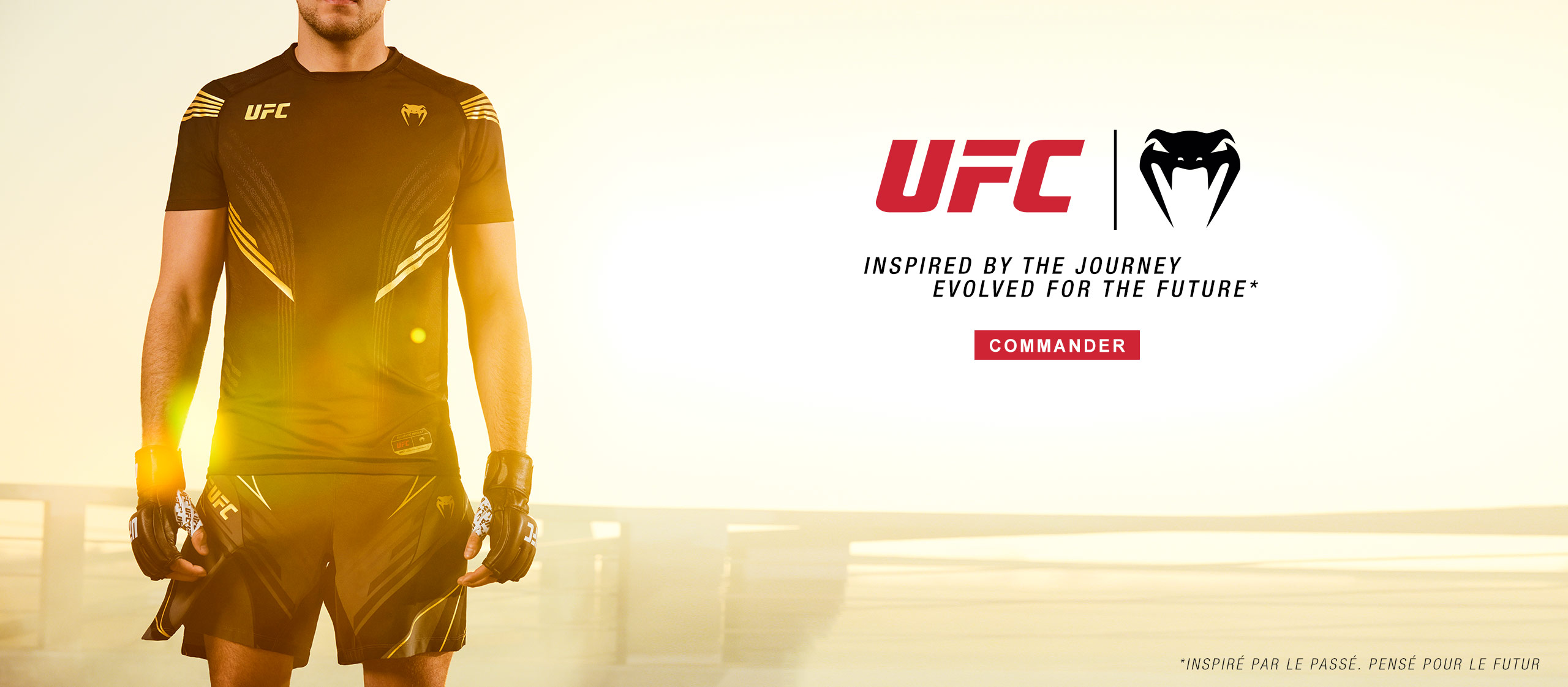 UFC 3 FR
