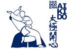 SDS Modern Aikido